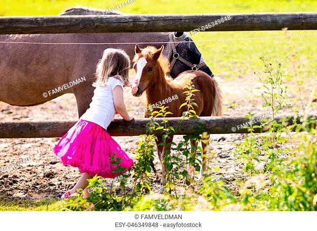 Little girl playing with mother and baby horses on sunny summer day in the country. Child feeding horse and foal pet. Kids taking care of animal pets on...
