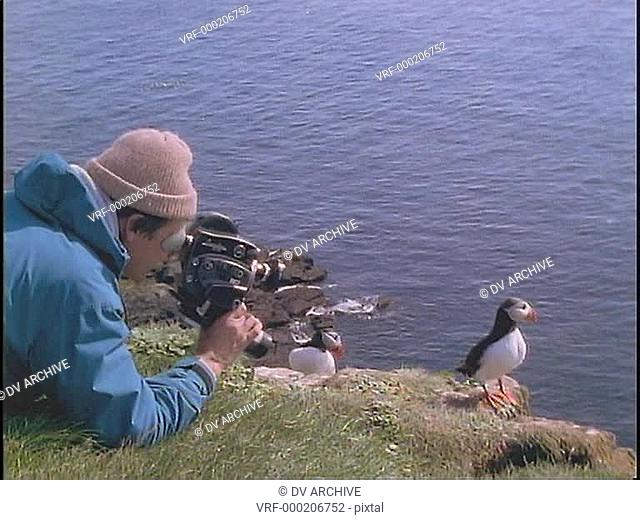A man shoots video of a Puffin