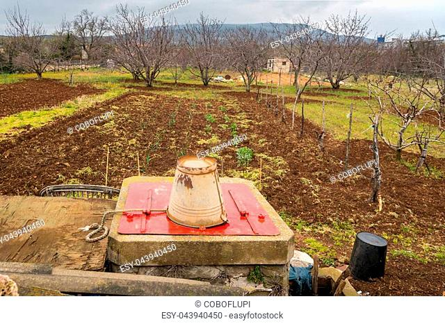 Small farm in Croatia (island Cres) vegetable field, orchard, well in spring on a cloudy day