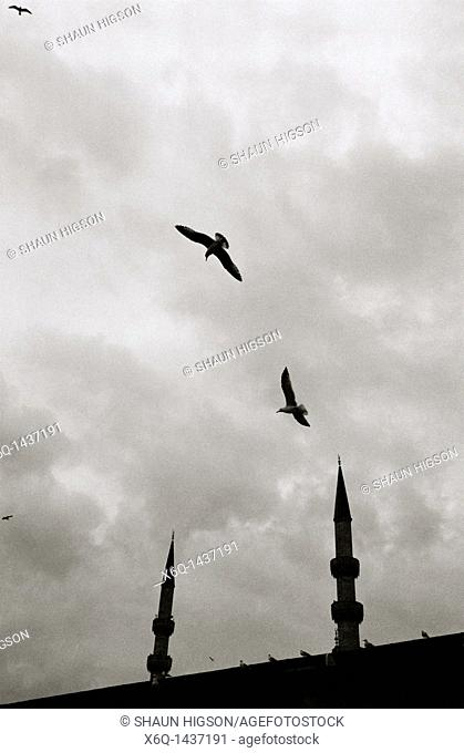 Silhouetted minarets in Istanbul in Turkey in the Middle East
