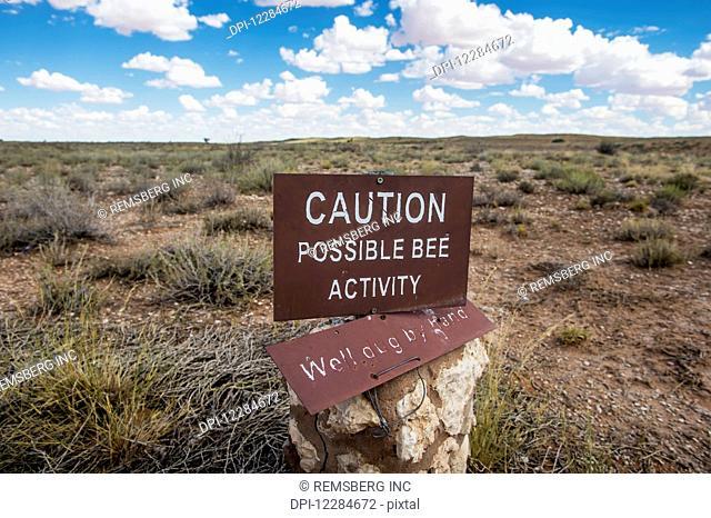 Bee activity caution sign, Khalagadi Transfrontier Park, Aucherlonie Museum; South Africa
