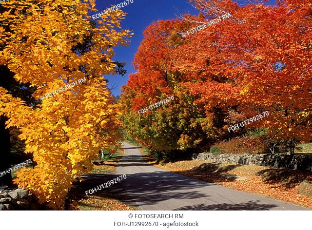 East Andover, New Hampshire, NH, Colorful fall foliage along Maple Street in East Andover in the fall