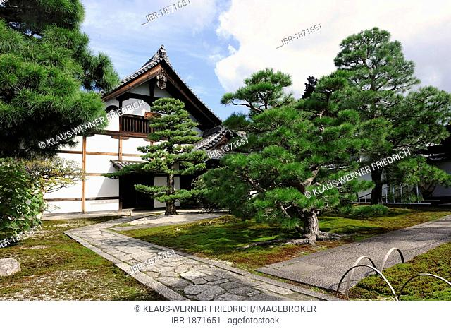 Pine-moss complex in Kennin-ji Temple in the Gion district, Kyoto, Japan, Asia