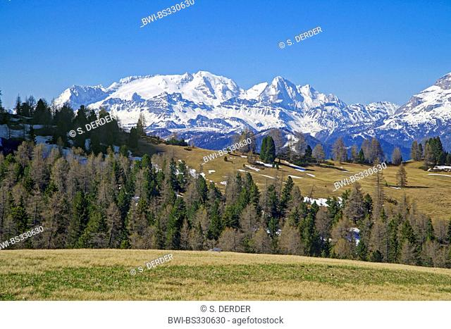 view from Armentara Alp to Marmolada and Sas dla Crusc, Italy, South Tyrol, Dolomites