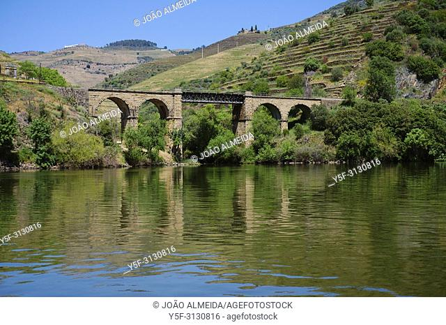 The Douro Valley, with the vineyards along its banks