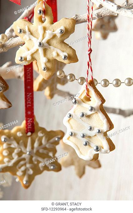 Edible tree decoration biscuits iced and in the shape of trees and snowflakes hanging with Noel red ribbon a bakers twine from a white branch