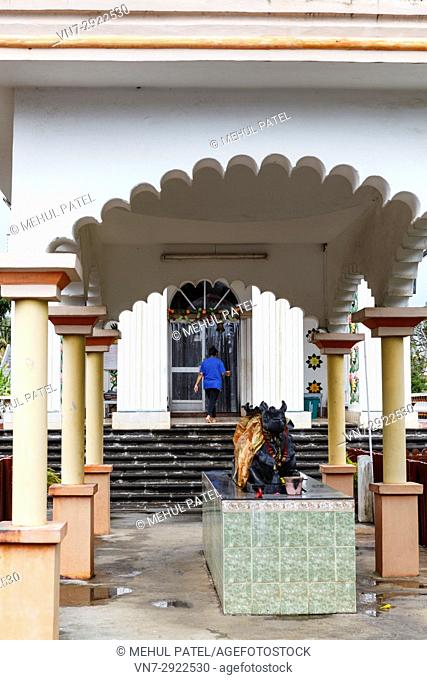 Lady entering the main temple of Maheshwarnath Mandir, Triolet, Mauritius. Maheshwarnath Mandir or Temple as it is also known is oldest and largest Hindu shrine...