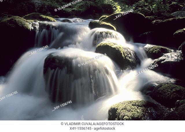 The river Demänovka in Demänovska dolina, Nizke Tatry, Slovakia
