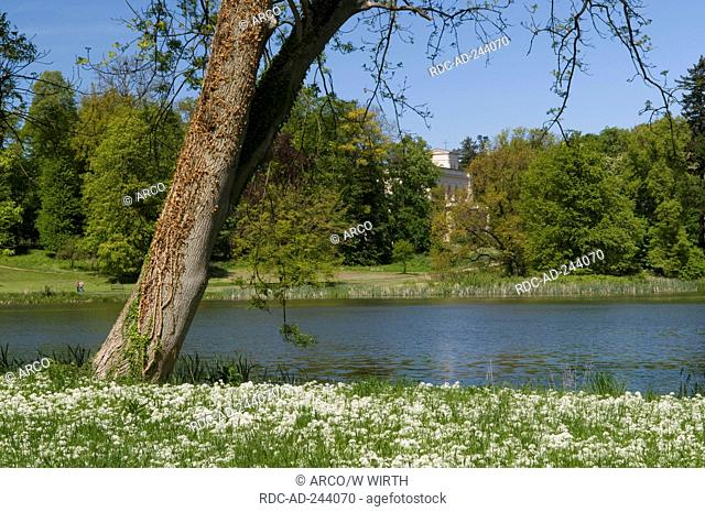 Castle park Putbus Isle of Rugen Mecklenburg-Western Pomerania Germany Rügen