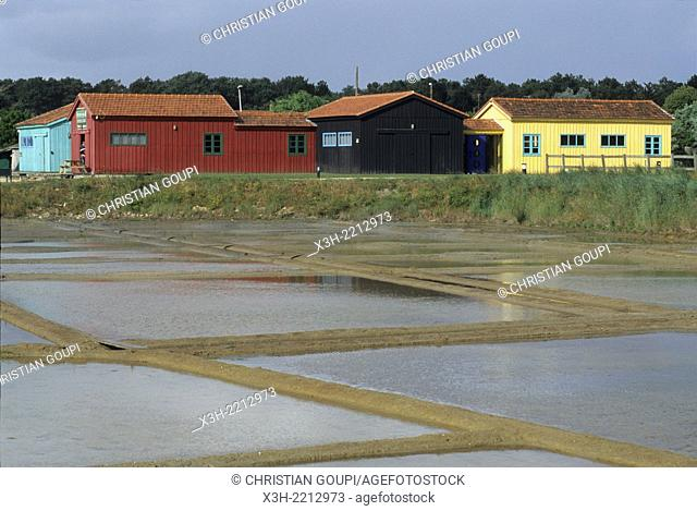 oyster farming ponds, Oleron island, Bay of Biscay, Charente-Maritime department, Poitou-Charentes region, France, Europe