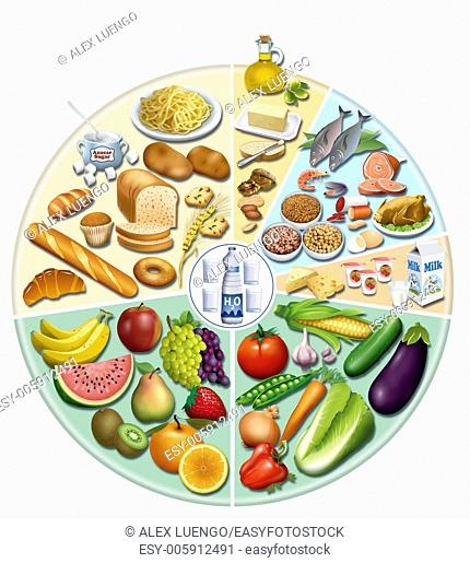 A balanced diet consists of foods that provide an adequate amount of each and every one of the nutrients we need for optimal health