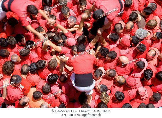 Colla Joves Xiquets de Valls. 'Castellers' building human tower, a Catalan tradition. Valls. Tarragona province, Spain