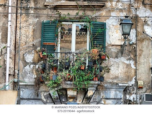 Window in Palermo, Sicily, Italy