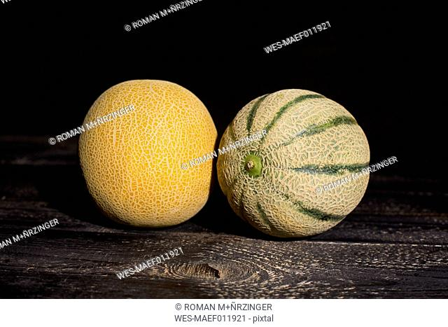 Galia and Rock melon in front of dark background