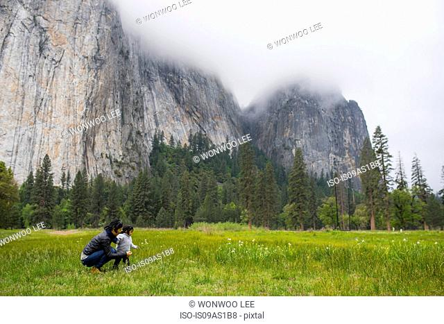 Mid adult woman crouching with toddler daughter in meadow, Yosemite National Park, California, USA