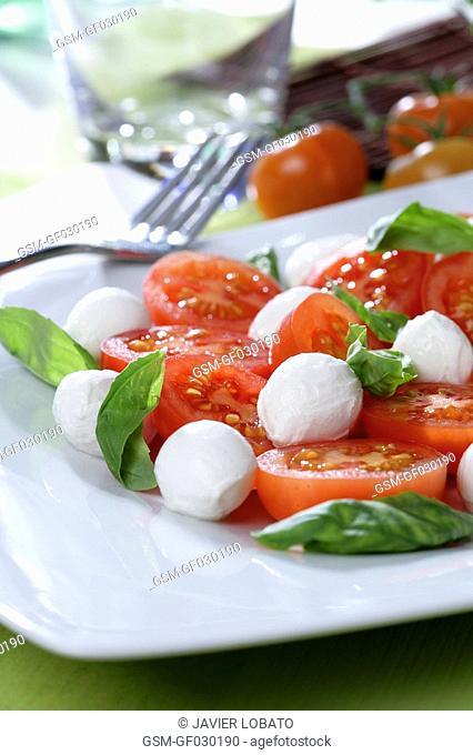 Salad with tomato, mozzarella cheese and basil