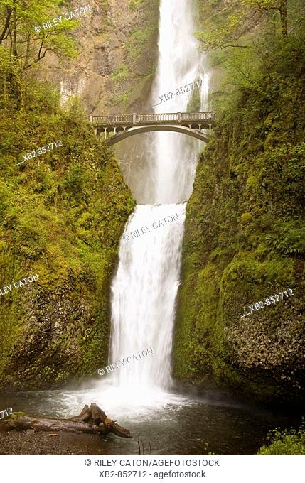 Oregon's number one public destination is Multnomah Falls The water fall is 620 feet high, making it the second highest year-round waterfall in the United...