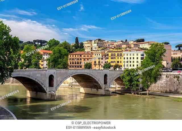 Ponte Principe Amedeo in Rome, Italy