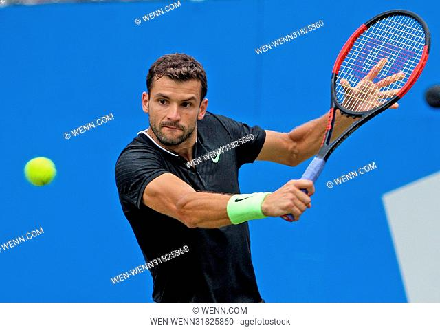 Aegon tennis Semi Finals Day...Grigor Dimitrov vs Feliciano Lopez. Featuring: Grigor Dimitrov Where: London, United Kingdom When: 24 Jun 2017 Credit: WENN