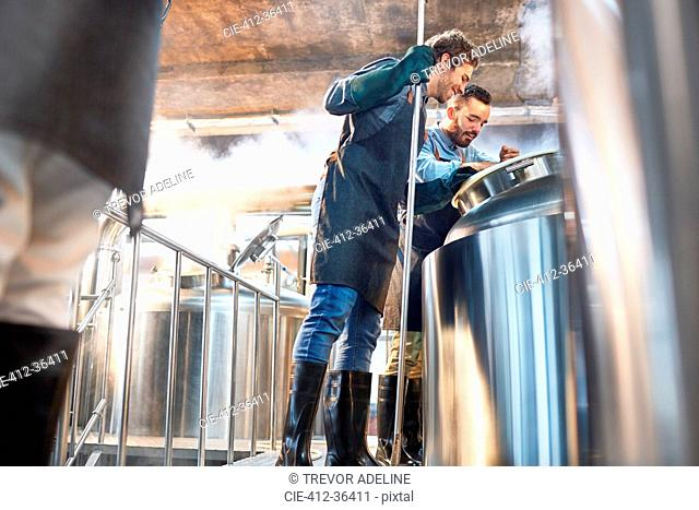Male brewers checking vat in brewery