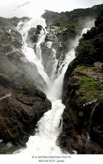 dudhsagar waterfalls in goa at maharashtra India Asia