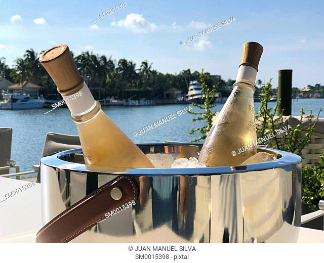 Champagne bottle in ice bucket on table outdoors, Key Biscayne, Florida, USA
