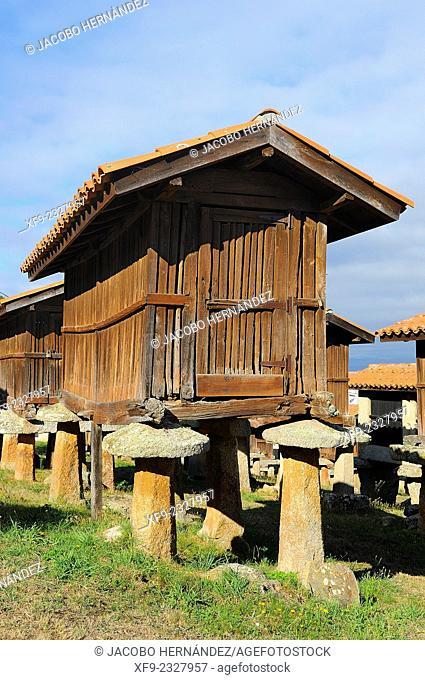 Hórreo(traditional granary).A Merca.Ourense province.Galicia.Spain