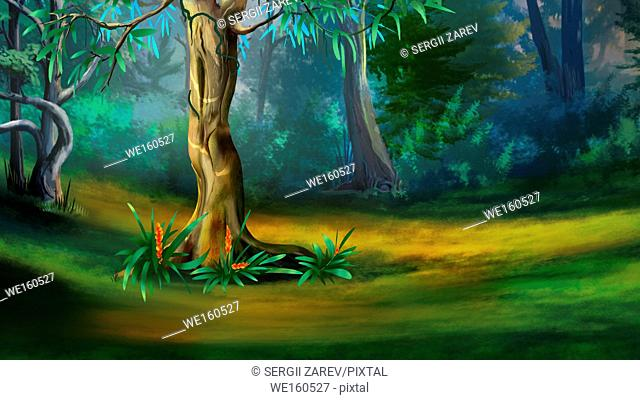 Large Tree in a Dense Forest in a Summer Day. Digital Painting Background, Illustration in cartoon style character