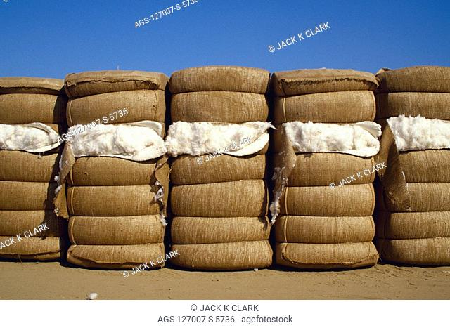 Agriculture - Bales of Acala cotton are lined up at a cotton gin storage yard / Kern County, California, USA