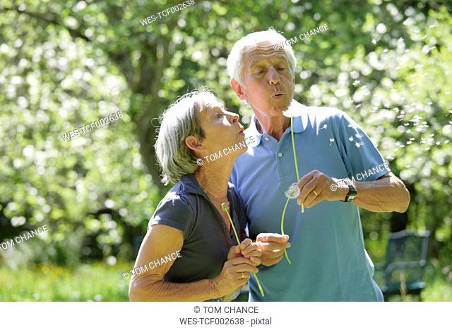 Germany, Bavaria, Senior couple blowing blowball