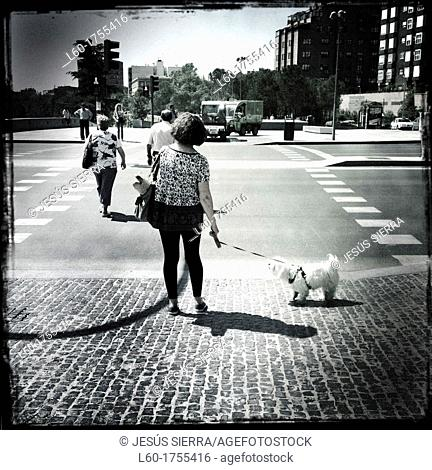 Woman with dog, Madrid, Spain