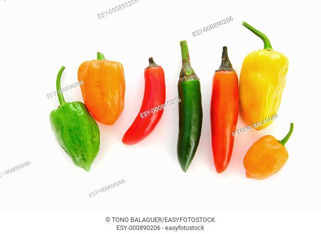mixed chili Habanero Serrano hot mexican peppers