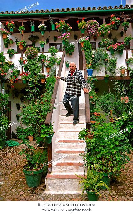 Typical courtyard of San Basilio, Cordoba, Region of Andalusia, Spain, Europe