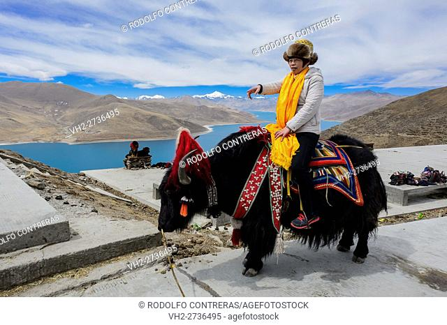 Tourist riding a yak, Tibet