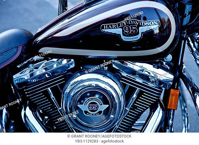 Harley Davidson Motorcycle, Key West, Florida, USA