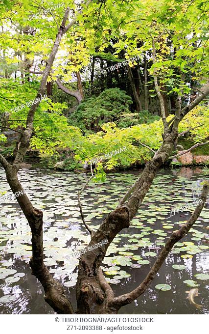 Japan, Kyoto, Nanzenji Temple, Tenjuan, garden,
