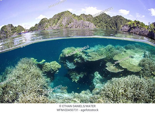 Coast and Coral Reef of Misool Island, Raja Ampat, West Papua, Indonesia