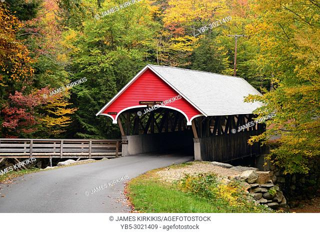 A quaint covered bridge is framed with autumn foliage in New Hampshire