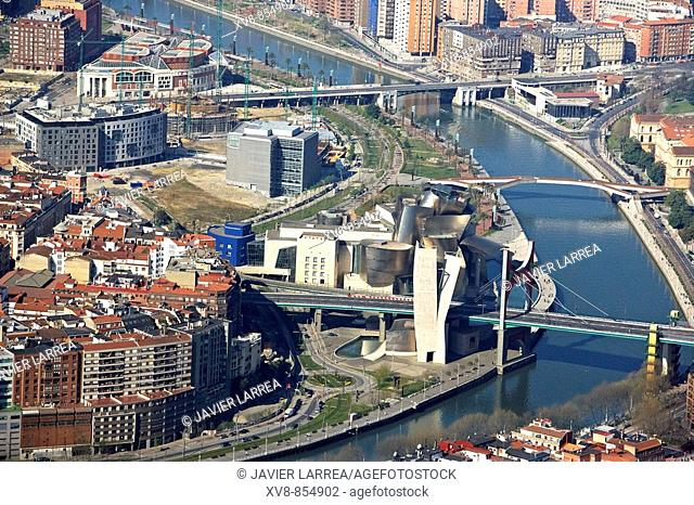 Guggenheim Museum, Bilbao, Biscay, Basque Country, Spain