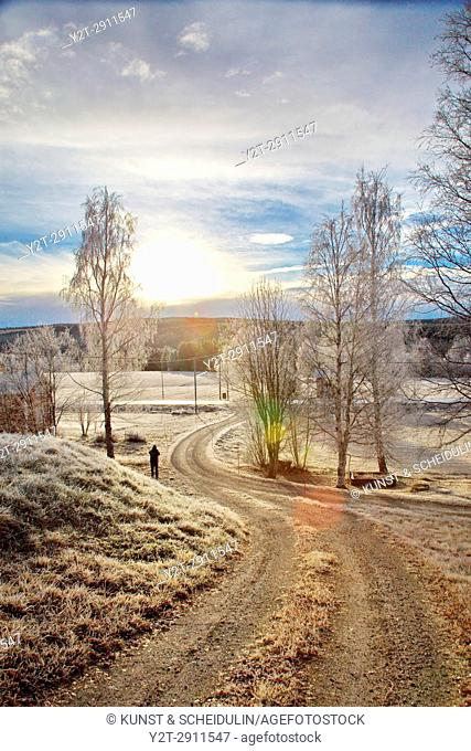 Man standing on a gravel driveway on a frosty autumn morning. Kubbe, Västernorrland, Sweden