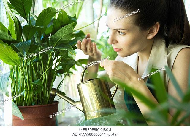 Woman watering potted plant