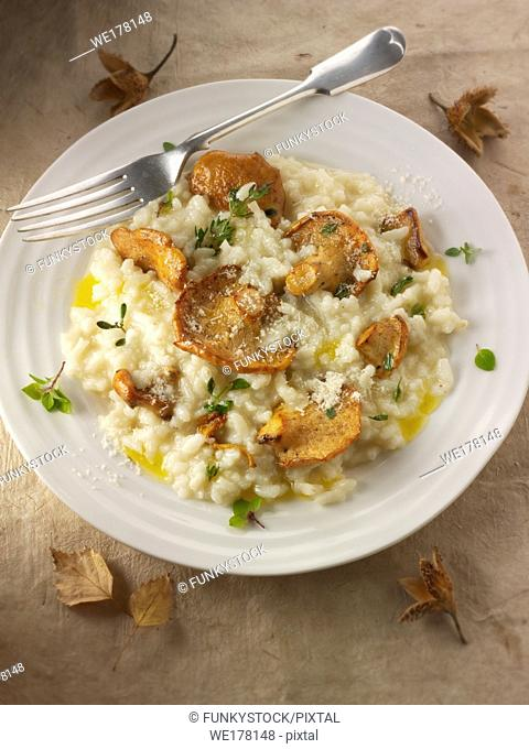 Sauteed wiild organic Pied de Mouton Mushrooms (hydnum repandum) or hedgehog mushroom risotto