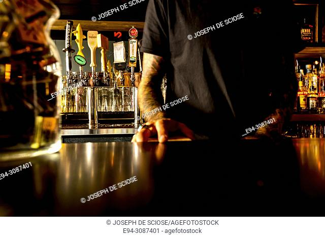Partial view of a male bartender standing at a bar with bottles of alcohol in the background