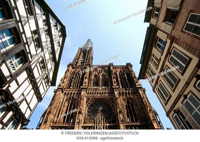 Cathedral. Strasbourg. Alsace, France