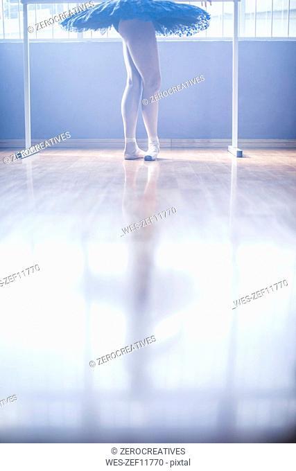 Ballet dancer stance