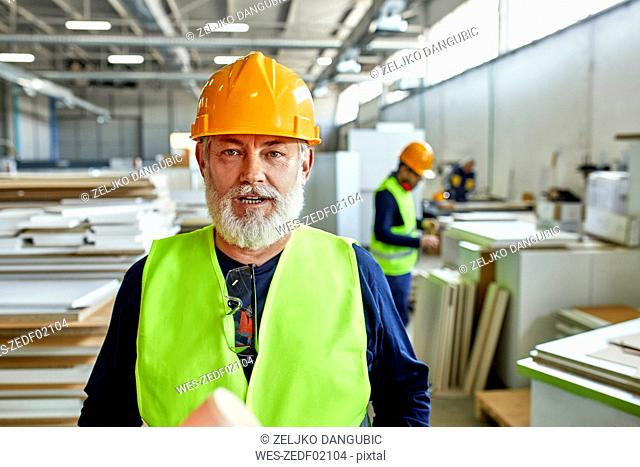 Portrait of mature worker in factory
