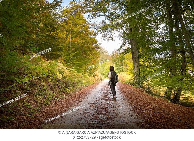 Woman backpacker walking and autumn in Irati forest