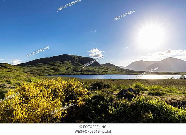 Great Britain, Scotland, Scottish Highlands, Glencoe, Rannoch Moor, Lochan na H'Achlaise