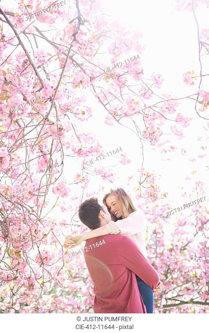 Couple hugging under tree with pink blossoms