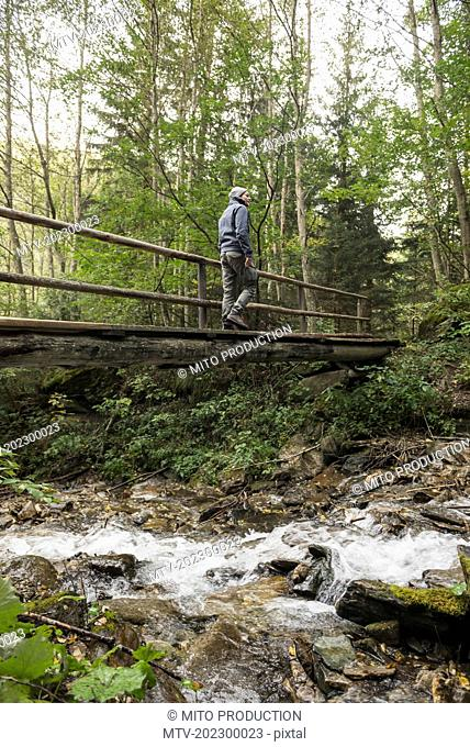 Mature hiker crossing footbridge in forest, Austrian Alps, Carinthia, Austria